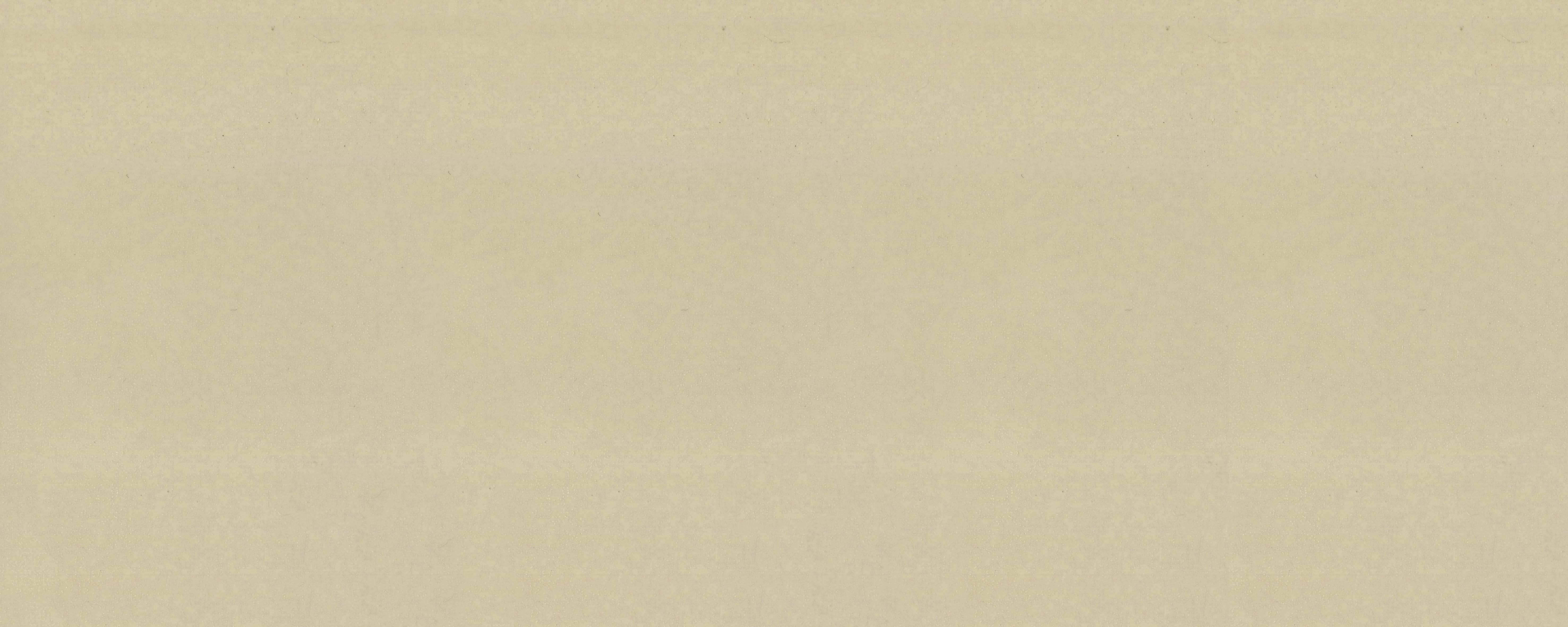 34 Mystic beige  20x50 - Hansas Plaadimaailm
