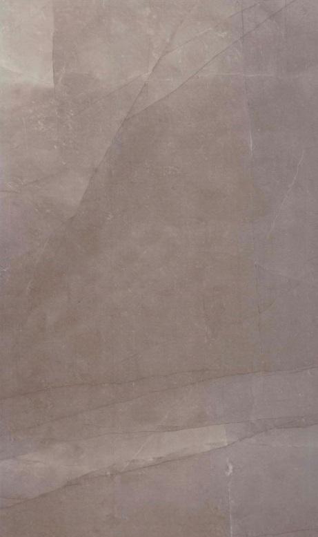 Opal  vizon 25x50 - Hansas Plaadimaailm