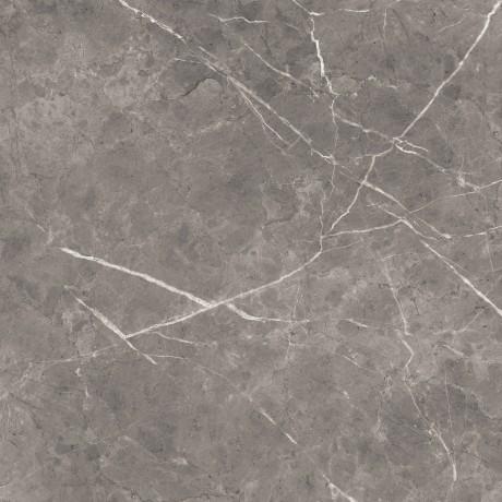 Bolonia marengo polished rect. 60x60 - Hansas Plaadimaailm