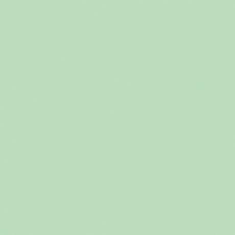 Colorvision medium softly green glossy 1190-B303 20x20 I sort - Hansas Plaadimaailm