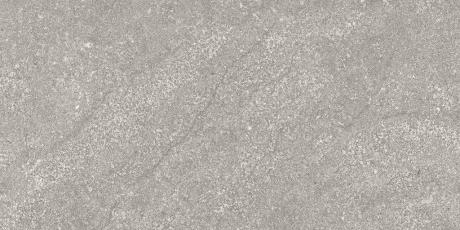 Alta silver matt 2572-RZ60 R10 rect. 30x60 II sort - Hansas Plaadimaailm