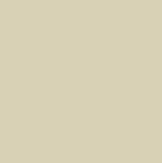 Bianco ghiaccio 71271 CD28881P R9 20x20x0,8 I sort - Hansas Plaadimaailm